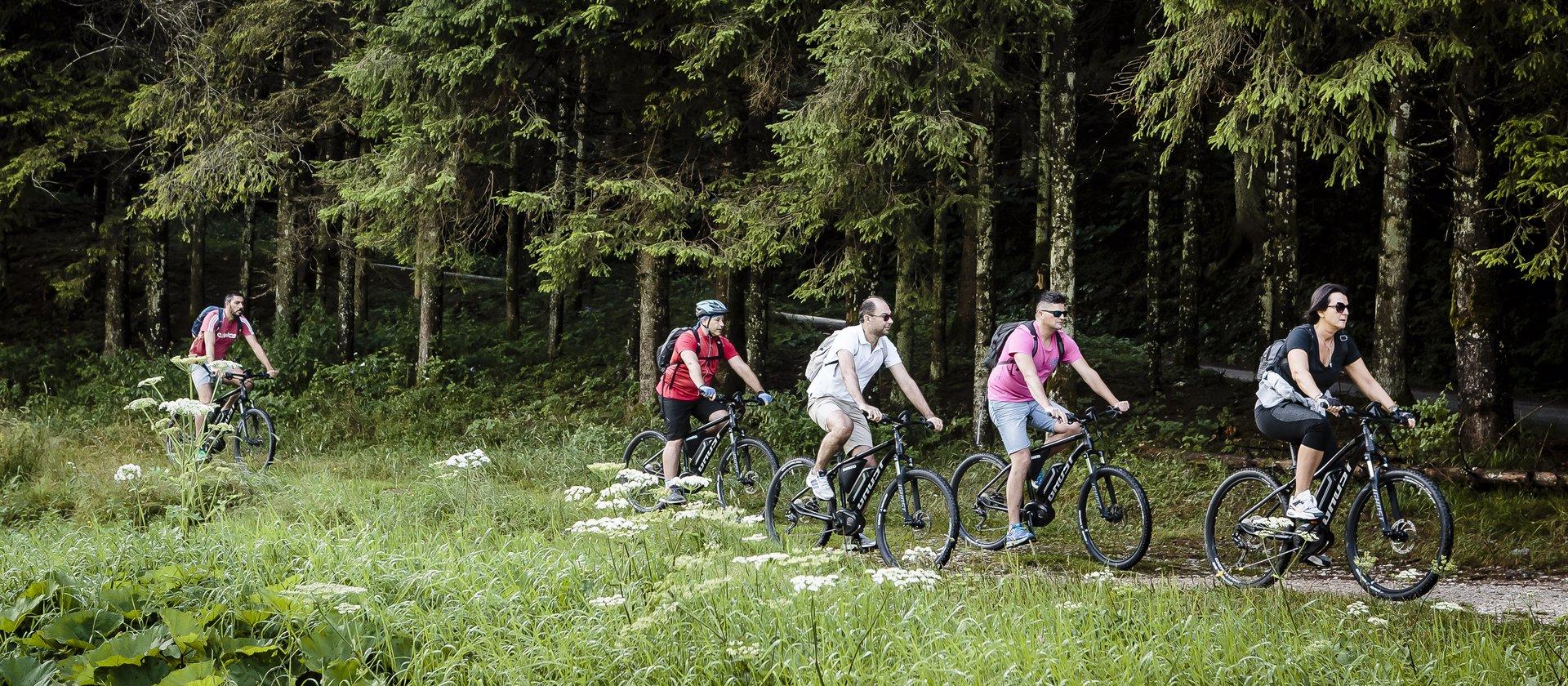 bike w n24