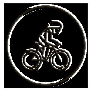 icona bike